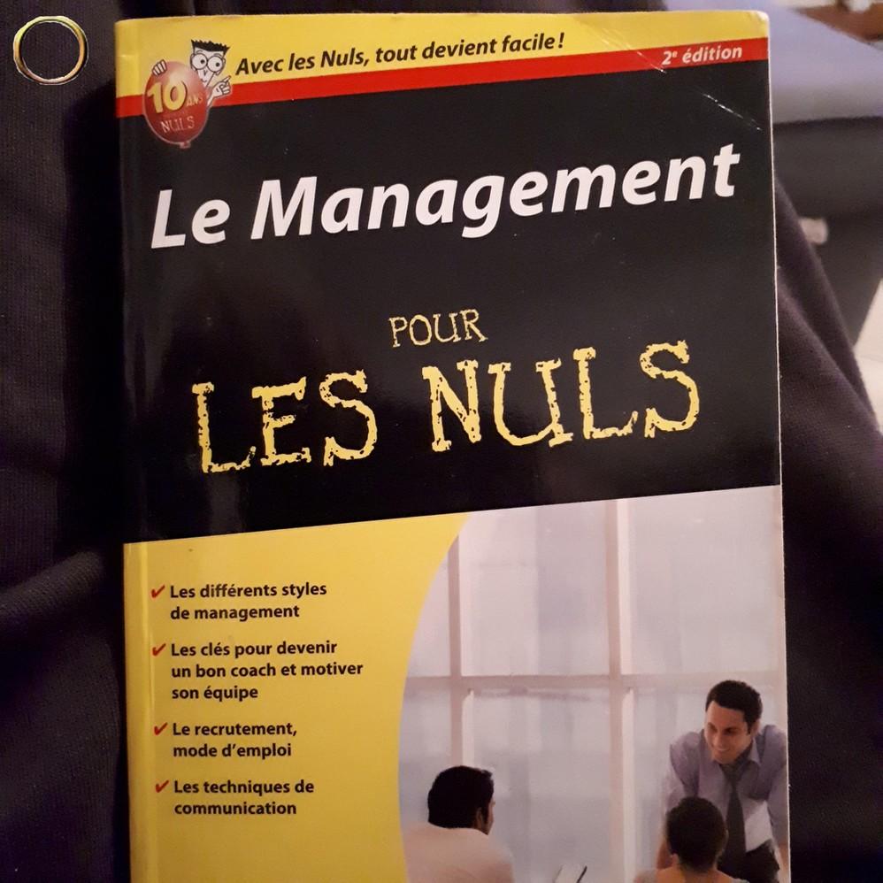 Livre : le management pour les nuls