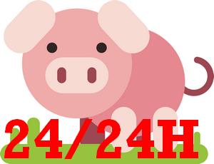 peppa pig h24